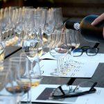 Cómo catar un vino: Guía fácil